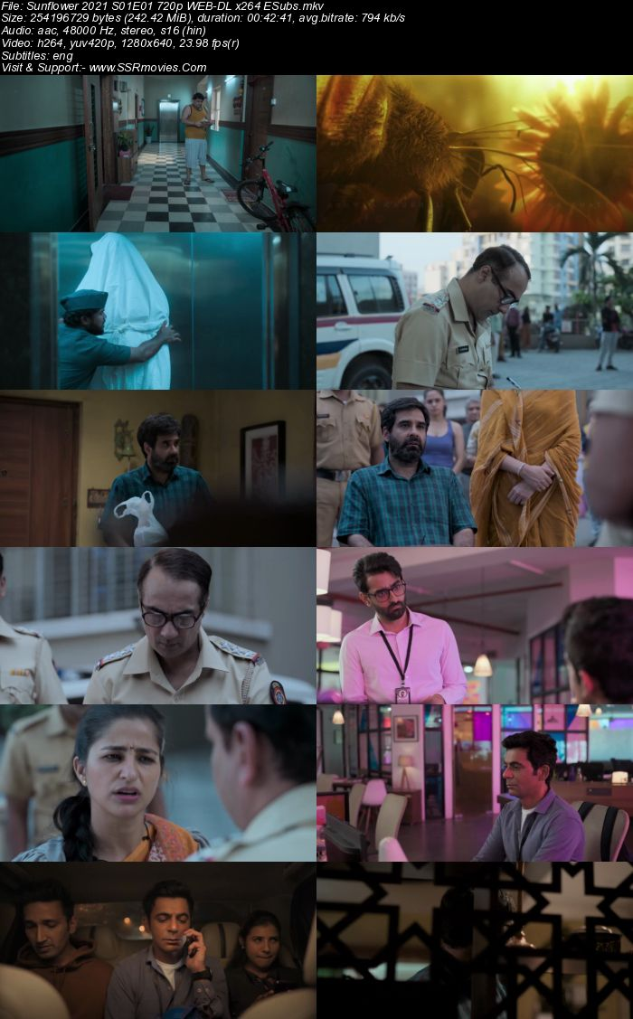 Sunflower (2021) S01 Complete Hindi 720p WEB-DL x264 1.7GB ESubs Download
