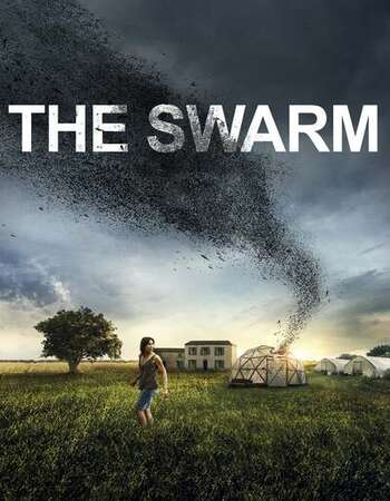 The Swarm 2020 English 720p WEB-DL 800MB Download
