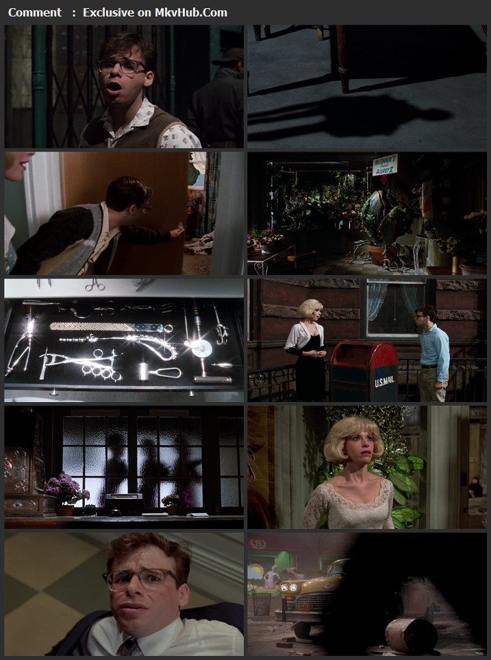 Little Shop of Horrors 1986 English 720p BluRay 1GB Download