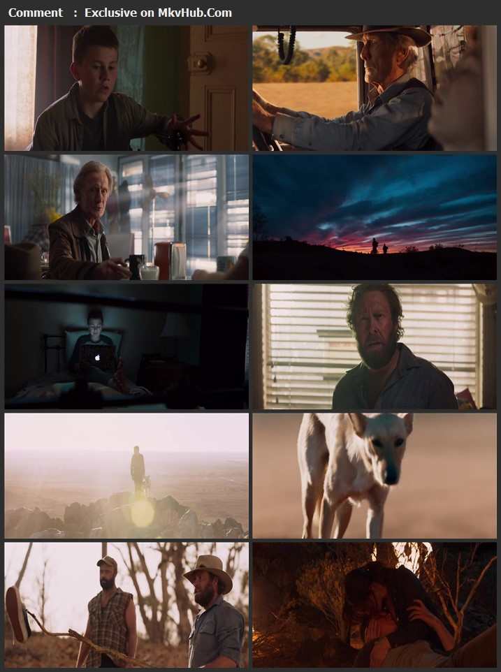 Buckley's Chance 2021 English 720p WEB-DL 850MB Download