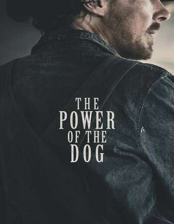 The Power of the Dog 2021 English 720p WEBSCREENER 1.1GB Download