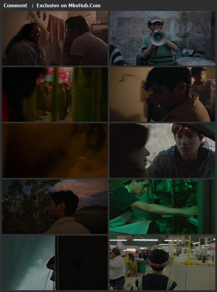 I Carry You with Me 2021 Spanish 720p WEB-DL 1GB Download