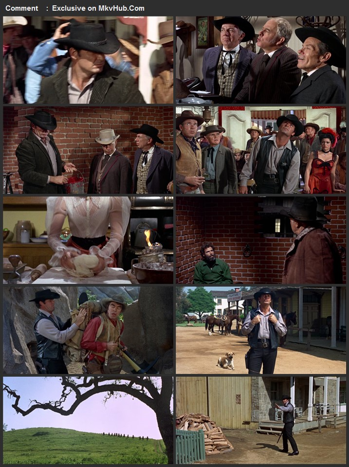 Support Your Local Sheriff! 1969 English 720p BluRay 1GB Download