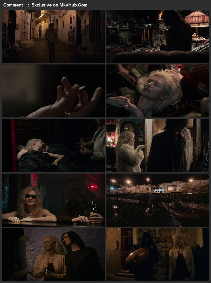 Only Lovers Left Alive 2013 English 720p BluRay 1GB Download