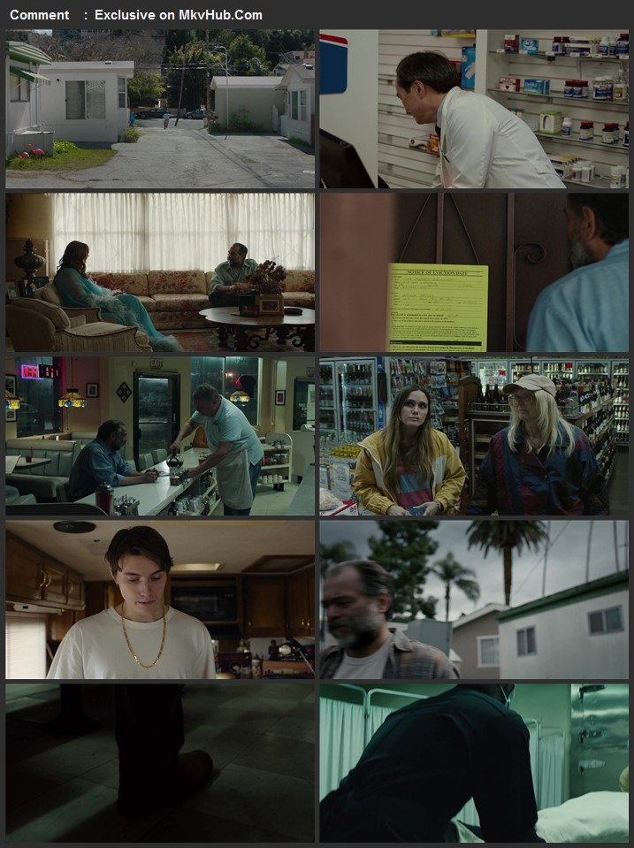 The Cleaner 2021 English 720p WEB-DL 800MB Download